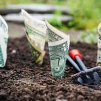 Inwestowanie dla początkujących: praktyczne porady