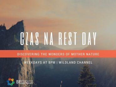 Rest Day – ważny dzień treningowy
